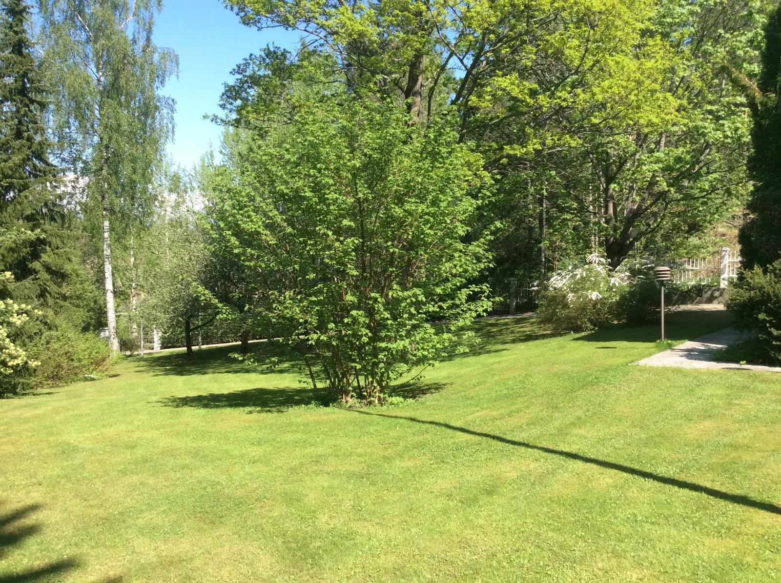Kaunis hoidettu puutarhapiha