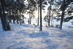 Talvinäkymä rannassa