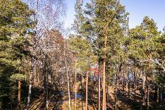 Näkymä asunnosta F8, noin 2. krs. tontin puut kaadetaan.