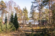 Näkymä asunnon C4 noin 1. krs, tontin puut kaadetaan