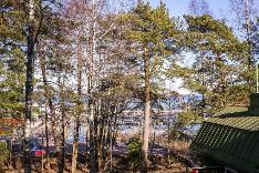 Näkymä asunnon G11 kohdalta noin 1. krs., tontin puut kaadetaan