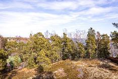 Näkymä asunnosta G9, noin 1. krs., tontin puut kaadetaan