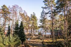 Näkymä asunnosta C4 noin 1. krs, tontin puut kaadetaan