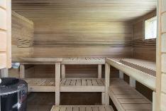 Reilunkokoinen sauna, jossa sekä Hetivalmis, että puukiuas.