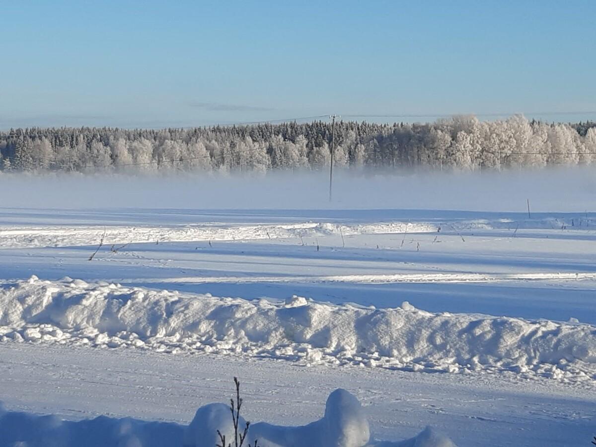 Talvinäkymää