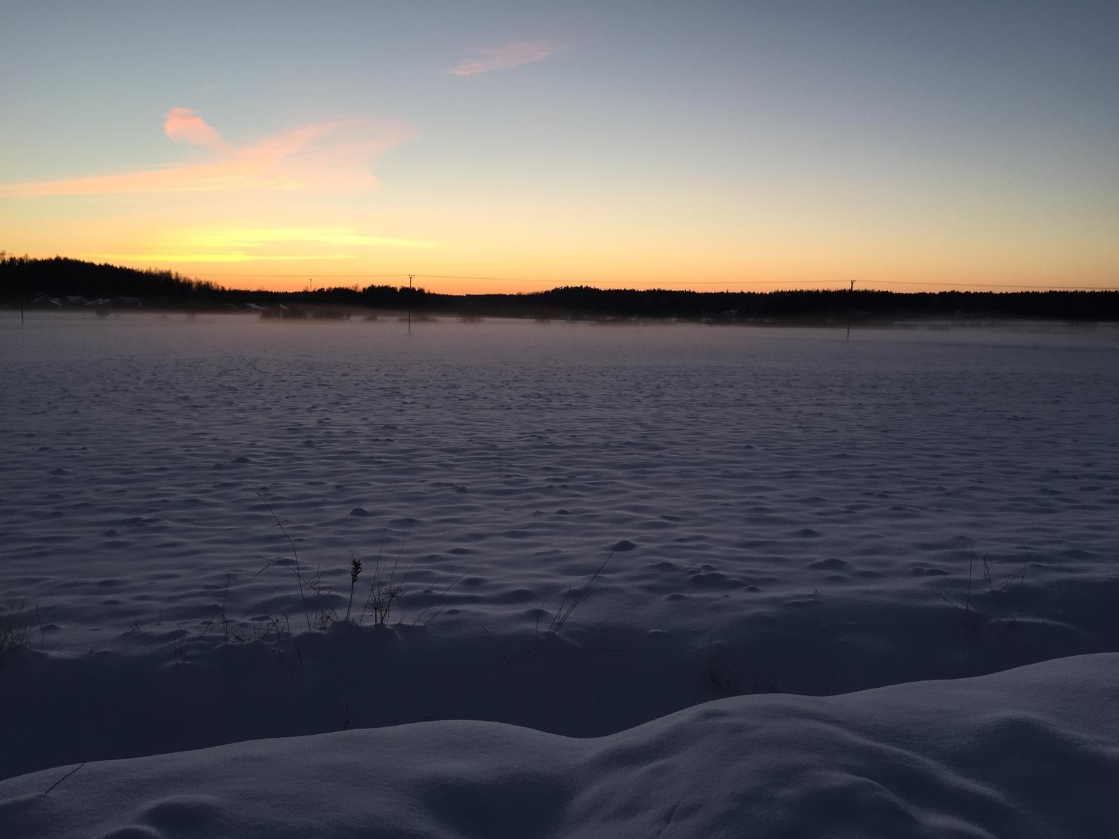Rauhoittava talvinen iltanäkymä pihalta pellon suuntaan. title=