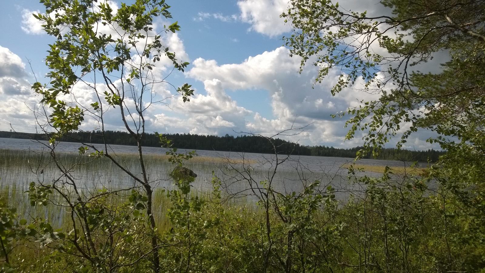 Näkymä järvelle päin