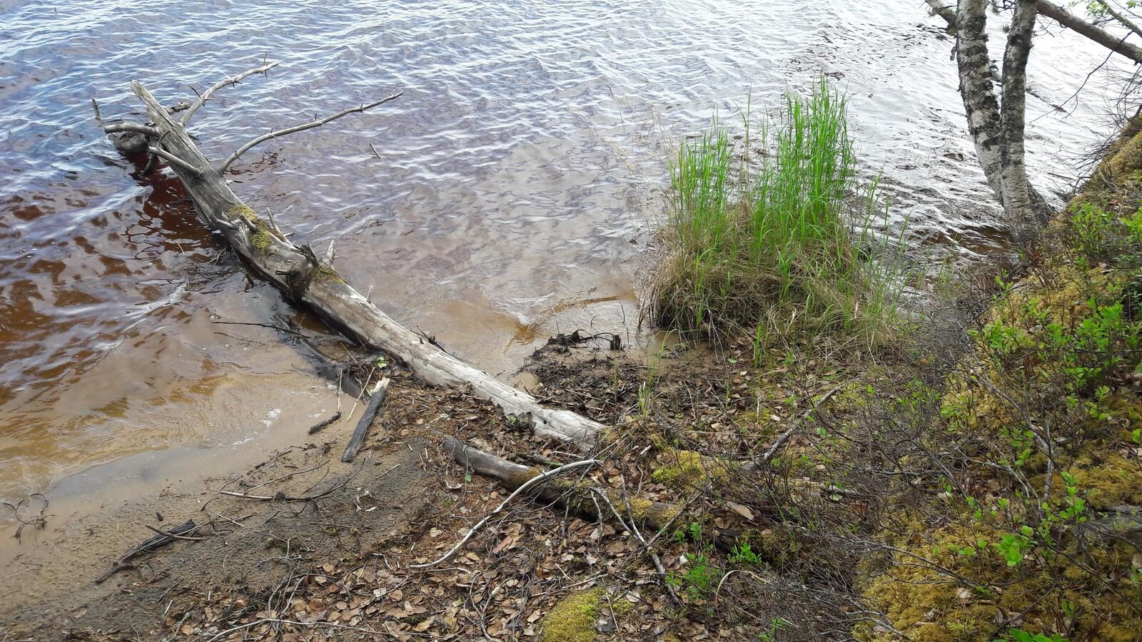 Hiekkaranta ja kirkas vesi