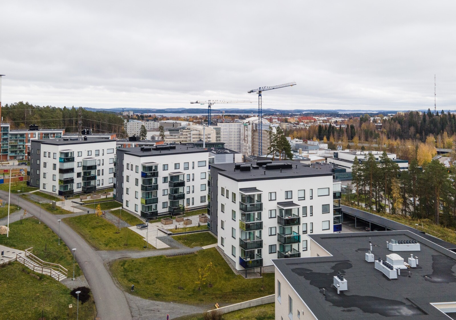 Puijonlaakso, Kuopio