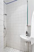 Pienemmässä kylpyhuoneessa on suihku ja wc.