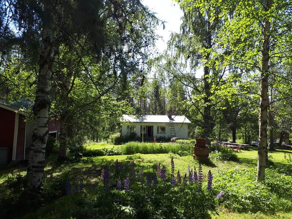 Pahkantie 310, Kaavi (Kortteiskylä)