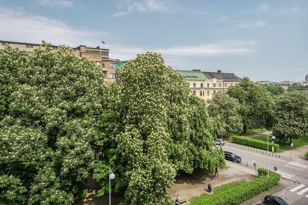 Eteläinen Hesperiankatu 6 00100 Helsinki
