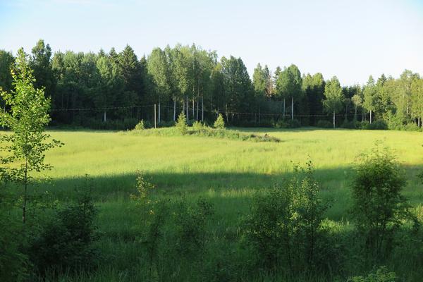 Paukkarintie, Hämeenlinna (485/489)