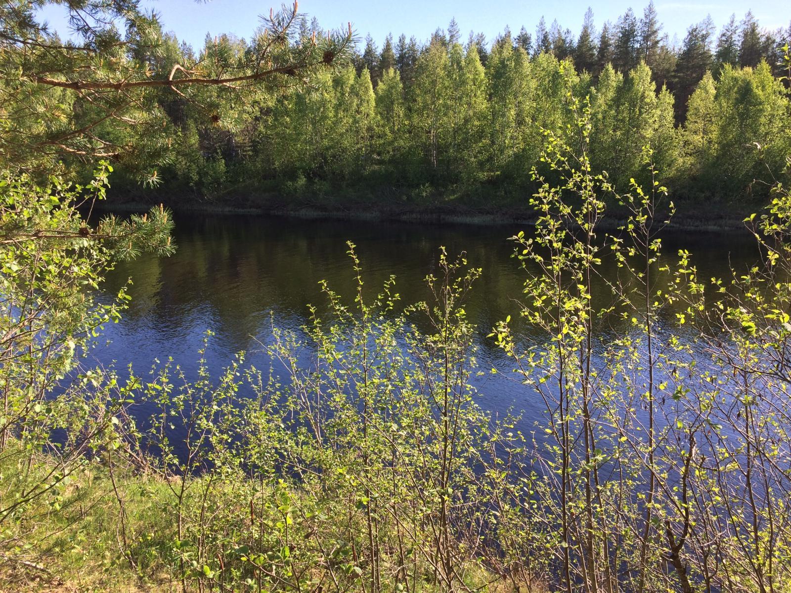 Maisema tontilta joen toiselle puolelle