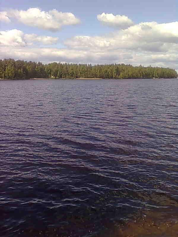 Saimaa, Kuokanselkä, Ranta kovaa kangasmaata.