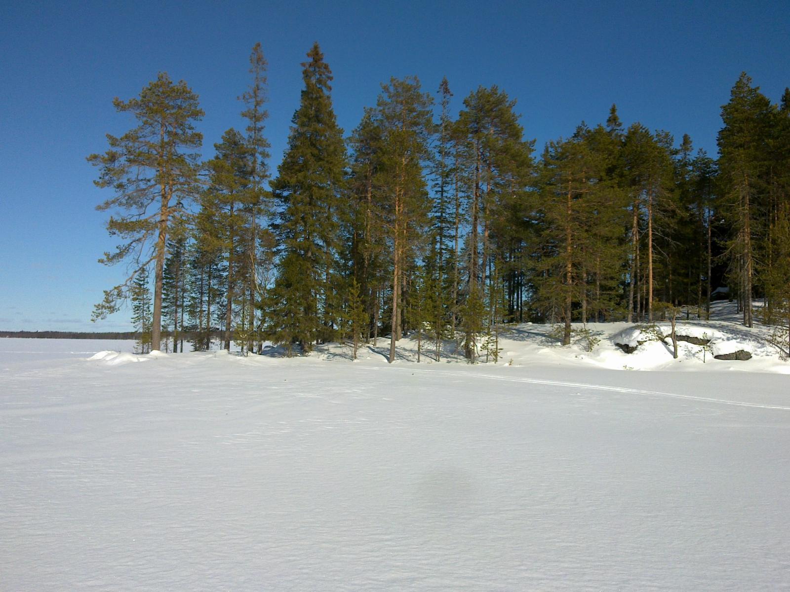 Talvinen yleiskuva Koviojärveltä