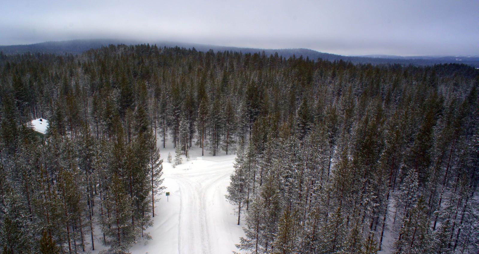 Tontti mäntymetsäisellä harjulla lähellä Iso-Syötettä. Ulkoilureitistö alueen läpi.