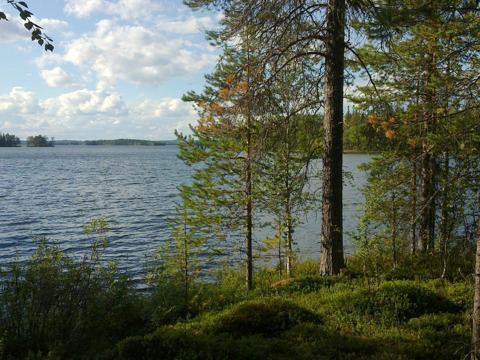Tontti 3/2, näkymää järven selälle