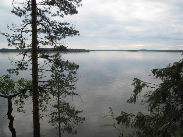 Päiretniemi , 37370 Vesilahti, Laukko