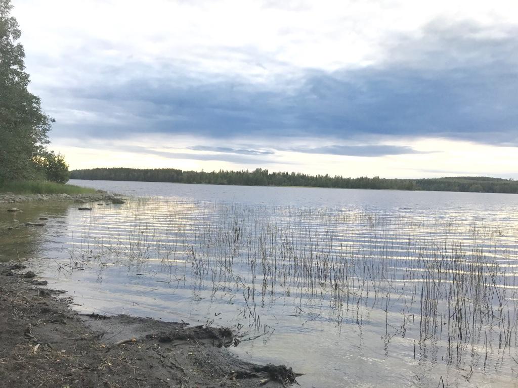 Keljonlahdentie 70, 34430 Ruovesi, Kekkonen