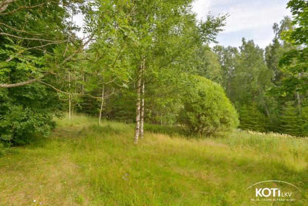 Mäkituvantie 2 B 02780 Espoo